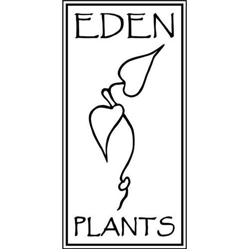 Eden Plants